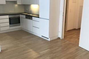 Neuwertige 2 Zimmer Wohnung mit Loggia , Nähe Hietzing U4