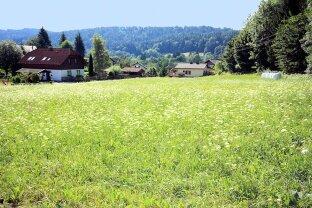 Preishammer! 2 herrliche Grundstücke in Reifnitz am Wörthersee