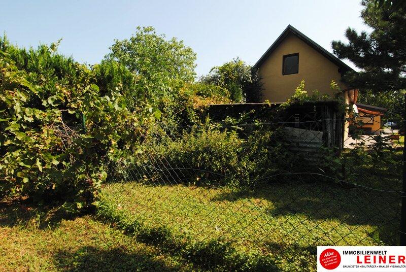Einfamilienhaus in Schwechat - Endlich genug Platz! Objekt_8935 Bild_815