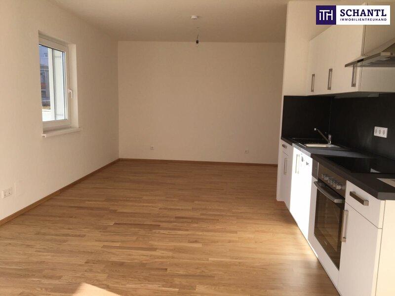 Perfekte Single-Wohnung mit Loggia + TOP Preis-Leistungsverhältnis in 8020 Graz, Nähe FH Joanneum!