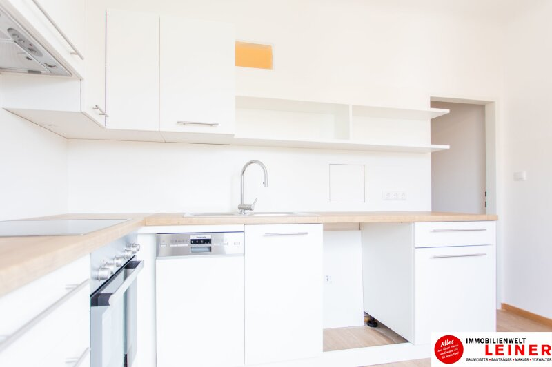 Schwechat - 2 Zimmer Mietwohnung Erstbezug nach Renovierung Objekt_11583 Bild_171