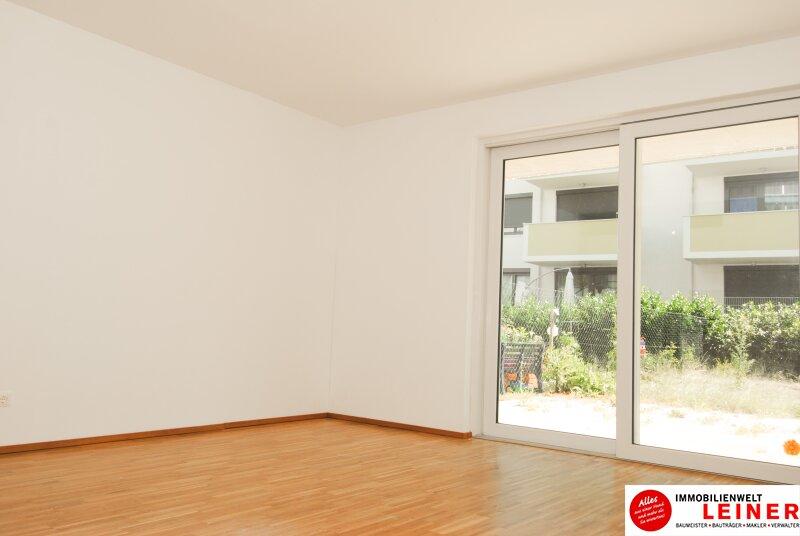 52m² Büro im Neubau mit schönem Garten und Terrasse Objekt_8907 Bild_881