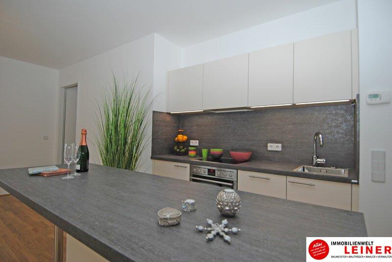 Schwechat - 2 Zimmer Mietwohnung im Erstbezug Objekt_3764 Bild_32