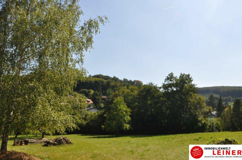 Exklusives inklusive! Nicht alltägliches Mehrfamilienhaus in Klosterneuburg! Objekt_8952 Bild_785