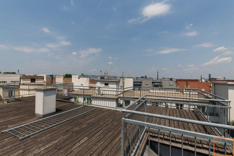Belvedere Garten - hoch hinaus ins Dachgeschoss