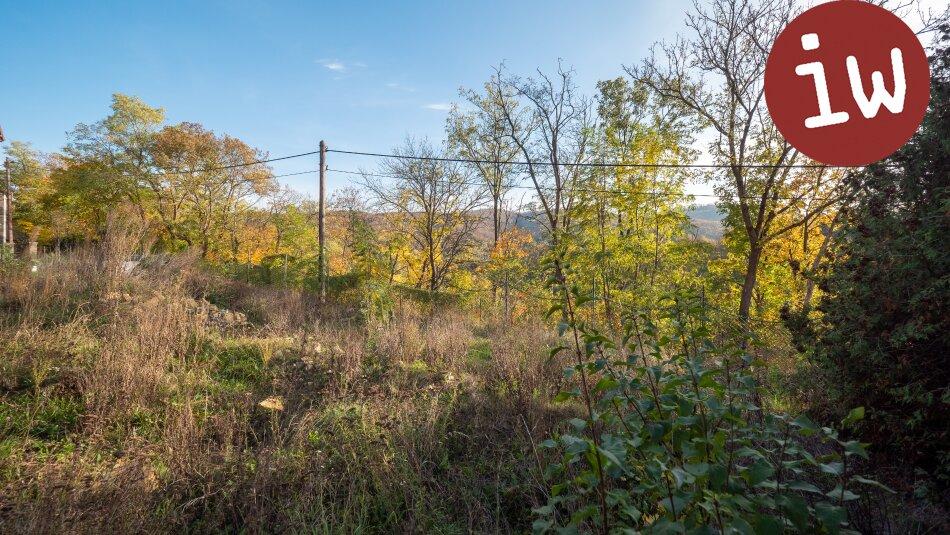 Wunderschönes Grundstück mit Baubewilligung für eine Familienvilla