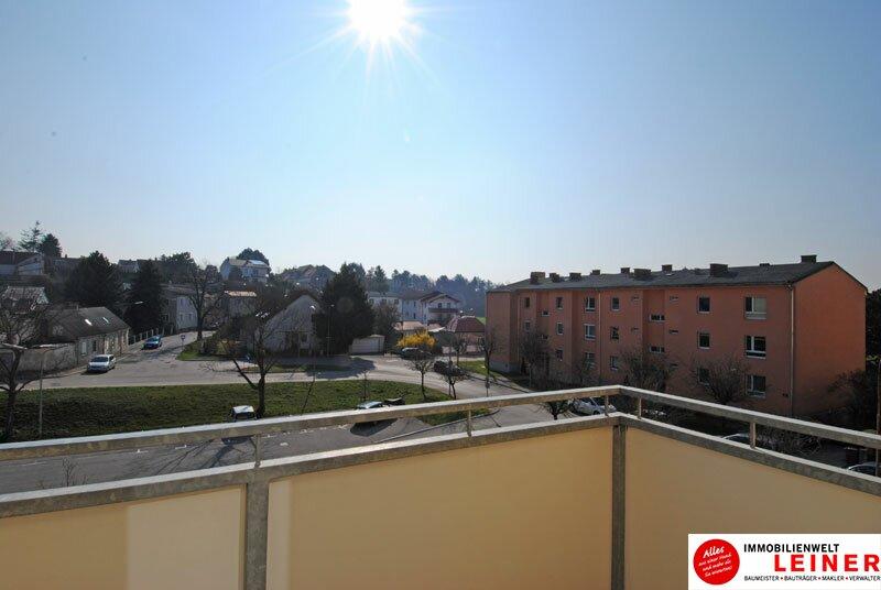 Schwechat - Single Wohnung in zentraler Lage /  / 2320Schwechat / Bild 3