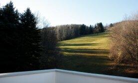 Idyllischer Landsitz im Wienerwald (30 km von Stadtgrenze)