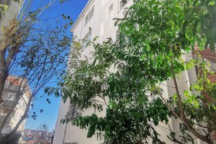 Istanbul - Frisch sanierte Wohnung in einem der schönsten Stadtteile - 5 Gehminuten Einkaufszentrum Cevahir