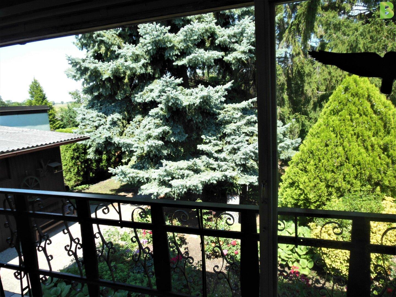 Garten mit Altbaumbestand