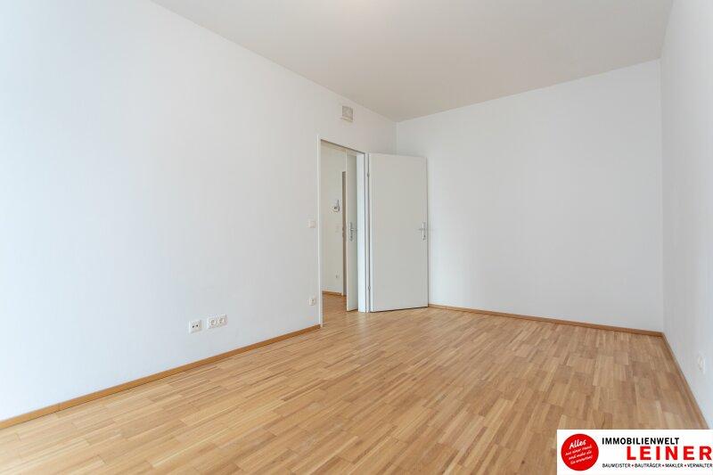 Himberg - 2 Zimmer Mietwohnung mit großartiger Terrasse Objekt_9655 Bild_625