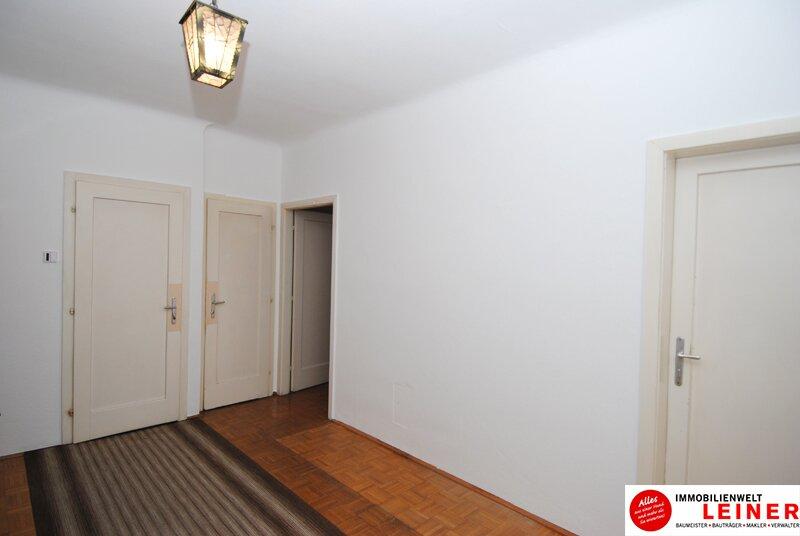 Schwechat Zentrum - sonnige Wohnung mit Terrasse! WG geeignet Objekt_8775 Bild_305