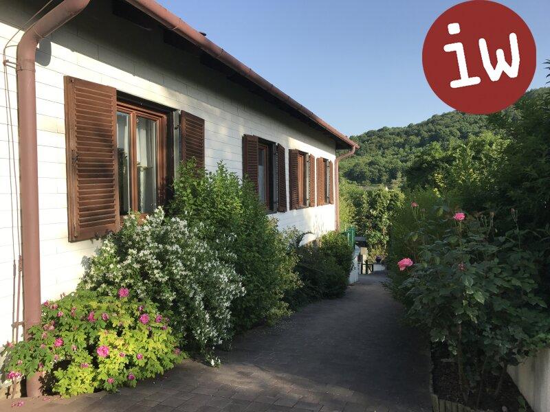 Familienhaus auf großartigem Grundstück am unteren Ölberg, Wienblick Objekt_376 Bild_101