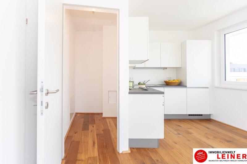 *UNBEFRISTET* Schwechat - 2 Zimmer Mietwohnung im Erstbezug mit großer Terrasse und Loggia Objekt_9406 Bild_469