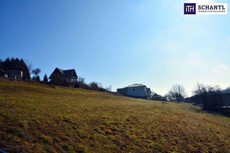 Wow! Grundstücke in Südwesthanglage mit Fernblick auf die Koralm + Ruhelage /  / 8503Sankt Josef In der Weststeierm / Bild 2
