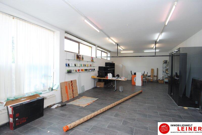 Bruck an der Leitha - Geschäftslokal inkl. Büro und Lagerraum Objekt_9216 Bild_628