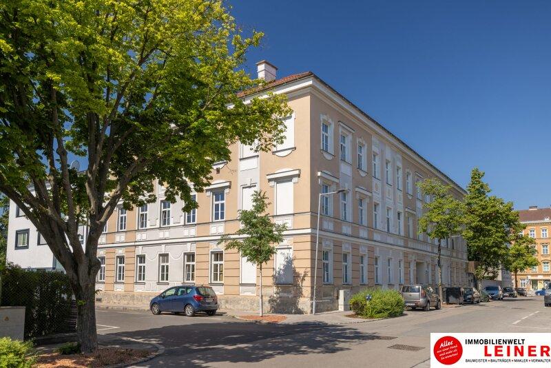 Praktisches Büro im Zentrum - hochwertig ausgestattet - Nähe Bahnhof Schwechat Objekt_18099