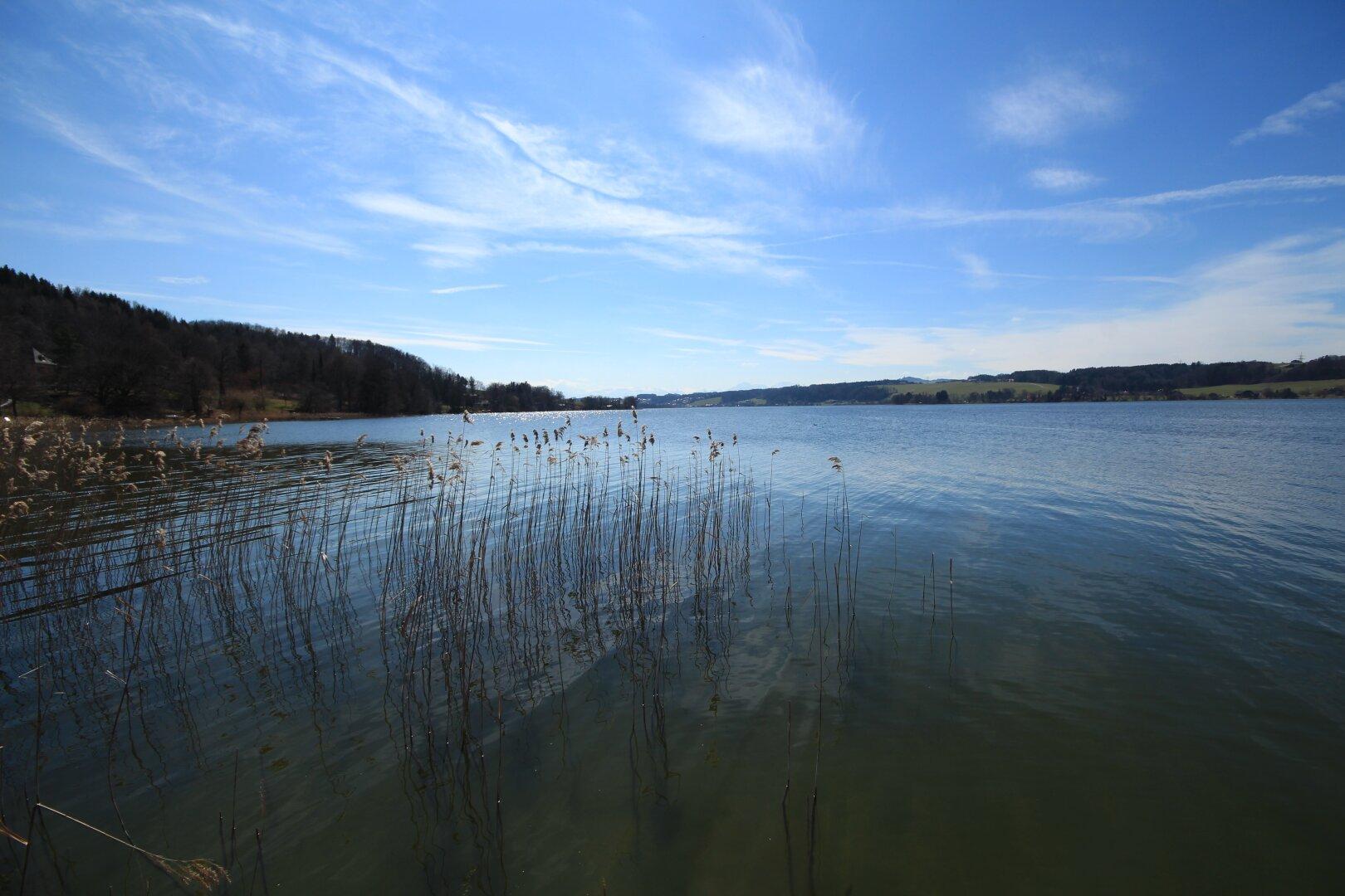 Eintauchen ins Salzburger Seengebiet!