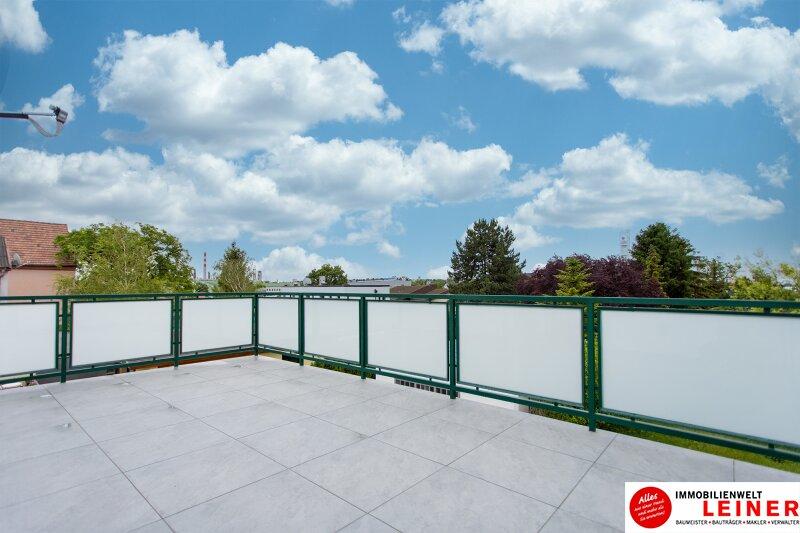 Schwechat: Saniertes Haus mit 2 getrennten Wohneinheiten zu mieten - auch für Praxis geeignet Objekt_10791 Bild_301