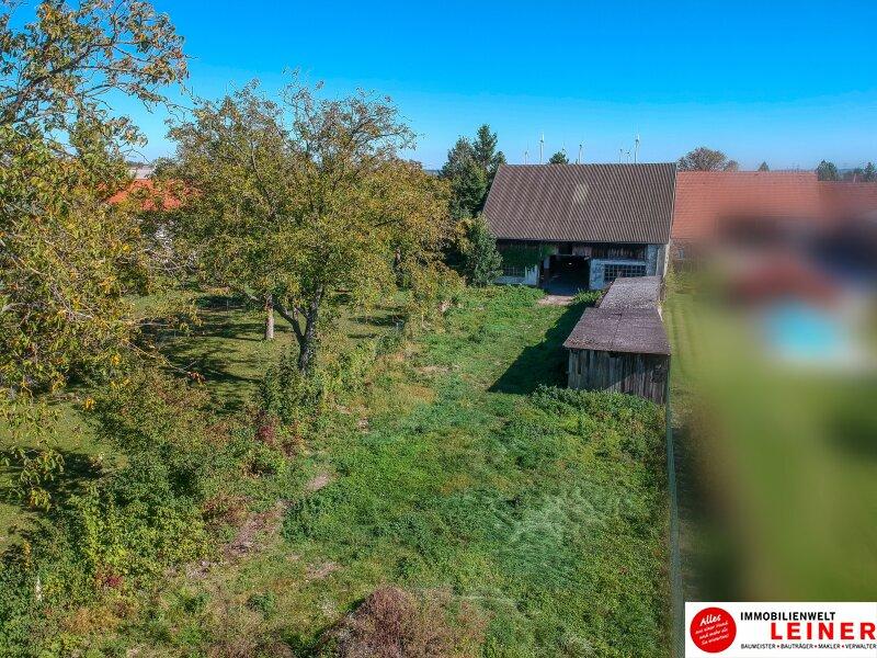Margarethen am Moos - Haus im Rohbau mit viel Potential Objekt_9964 Bild_225