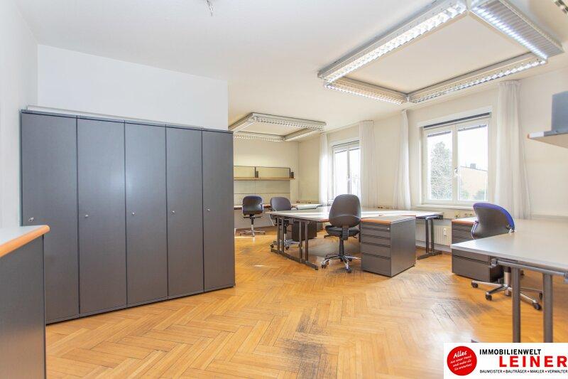 Modernes Büro im Zentrum von Schwechat Objekt_10043 Bild_488