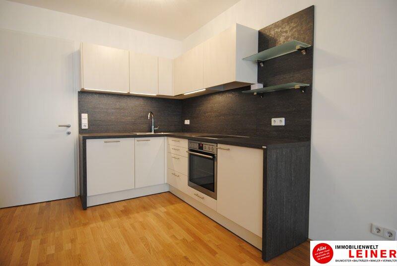 40 m² Mietwohnung in Schwechat - Neubau /  / 2320Schwechat / Bild 4