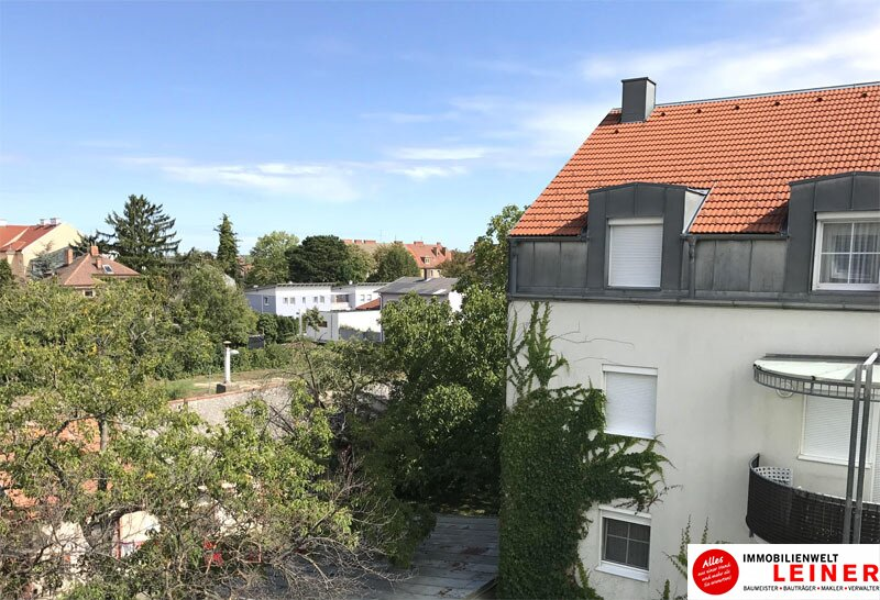 Schwechat: freundliche 2 Zimmer Eigentumswohnung im Zentrum Objekt_11274 Bild_687