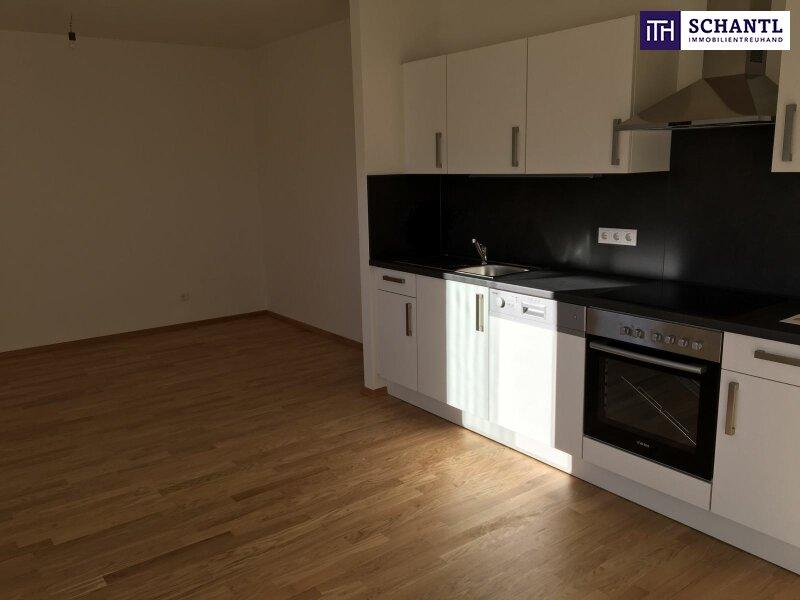 """Perfekte Single-Wohnung mit Loggia in den grünen Innenhof und der """"Sonne vorm Balkon""""! Worauf warten Sie noch?"""