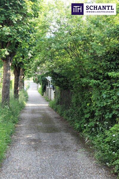 Naturidylle ! Absolute Toplage ! Südseitiges Traumgrundstück mit ausbaubarem Haus in Hinterbrühl ! /  / 2371Hinterbrühl / Bild 10