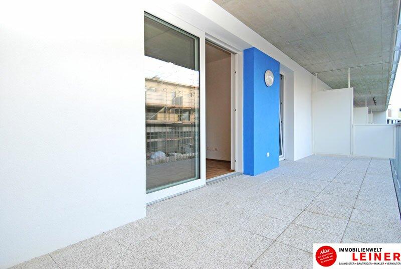 Himberg - 2 Zimmer Mietwohnung mit großartiger Terrasse Objekt_9655 Bild_629