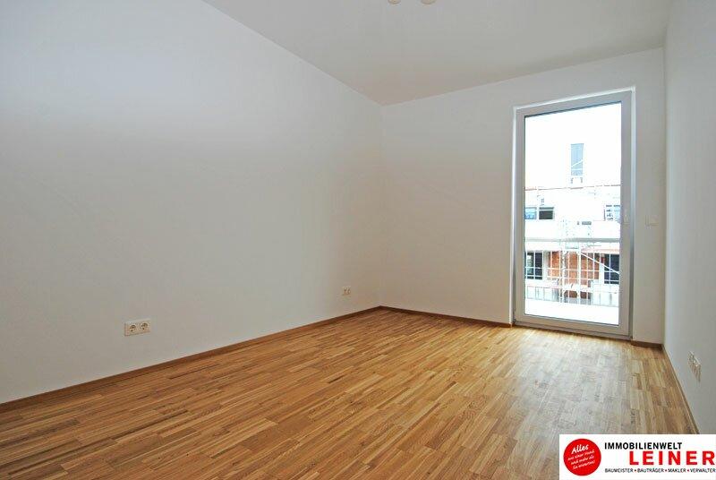 Himberg Zentrum - traumhafte Dachgeschosswohnung mit großzügiger Terrasse! Objekt_506 Bild_26