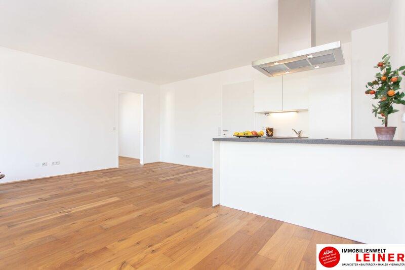 *UNBEFRISTET* 14 m² Terrasse * Schwechat - 2 Zimmer Mietwohnung im Erstbezug mit großer Terrasse Objekt_9162 Bild_855