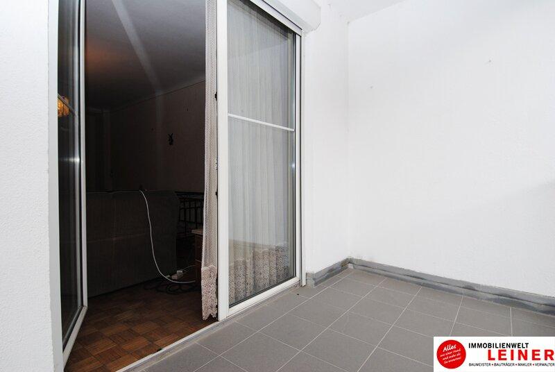 Schwechat Zentrum - sonnige Wohnung mit Terrasse! WG geeignet Objekt_8775 Bild_302