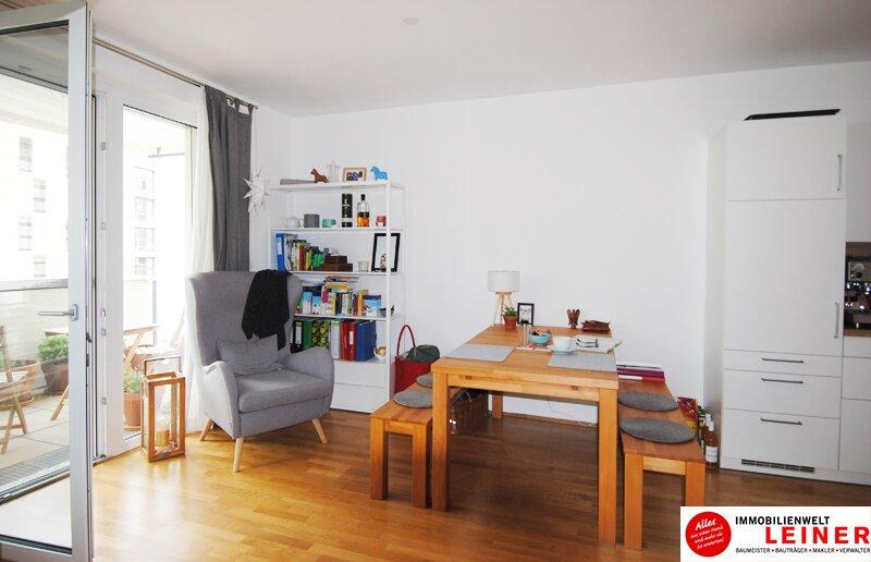 Großzügige Einzimmerwohnung mit Tiefgaragenplatz in Schwechat Objekt_9688 Bild_781
