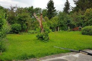 Haus mit Garten zum Mieten - Klein aber Fein...