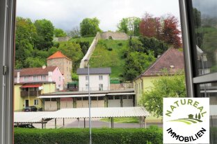 NEUER PREIS - Wunderbares Haus in schöner Brucker Altstadtlage!