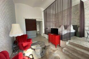 Boutiquehotel wird zur Singlewohnung oder zur/m barrierefreien Praxis/Büro - 1020 Wien