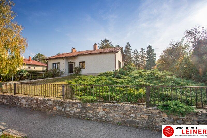 Hof am Leithaberge - 1900 m² Grundstück mit traumhaftem Einfamilienhaus Objekt_10467 Bild_833