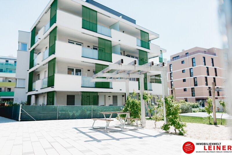 Schwechat - Penthouse - inklusive 28 m² Terrasse Objekt_9966 Bild_285