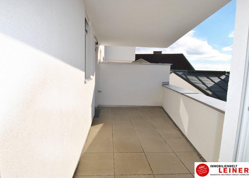 Schwechat - 57 m² Mietwohnung mit Terrasse im Zentrum - Erstbezug Objekt_9290 Bild_489