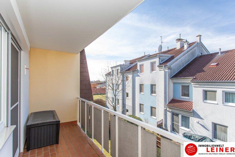 Hier wird Ihr Wohntraum Wirklichkeit! 3 Zimmer Mietwohnung in Enzersdorf an der Fischa Objekt_12043 Bild_256