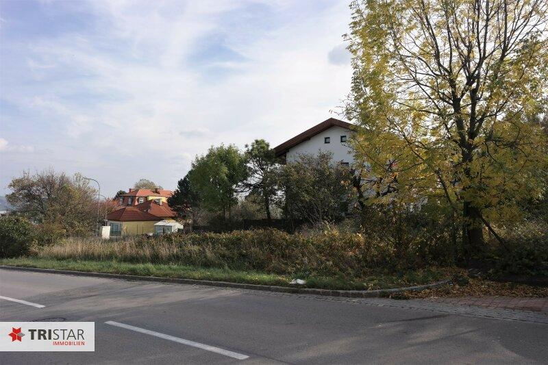 :::Modernes Niedrigenergie-Doppelhausprojekt in Bestlage Klosterneuburgs - Qualität und Stil im Baurecht::: /  / 3400Klosterneuburg / Bild 5