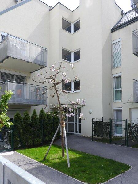 moderne Neubauwohnung mit großer Terrasse und Garage /  / 1120Wien / Bild 5