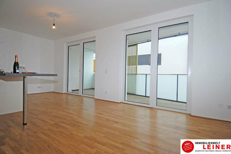 *UNBEFRISTET*Schwechat - 2 Zimmer Mietwohnung im Erstbezug mit großer Terrasse und Loggia Objekt_8692 Bild_226