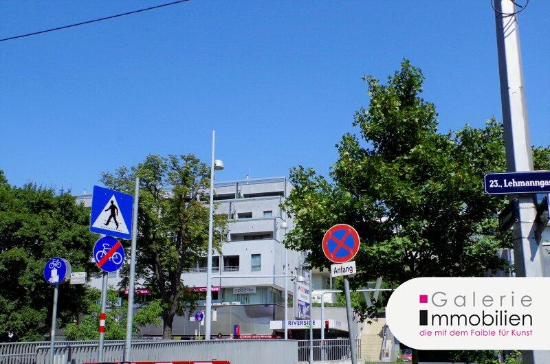Bezaubernde DG-Wohnung mit 2 großen Terrassen auf der Wohnebene Objekt_30266 Bild_513