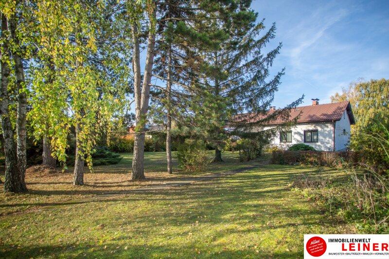 Hof am Leithaberge - 1900 m² Grundstück mit traumhaftem Einfamilienhaus Objekt_10467 Bild_836