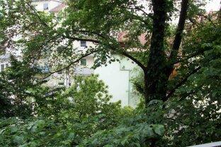 3 Zimmer Wohnung Nähe TU, Sparbersbachgasse