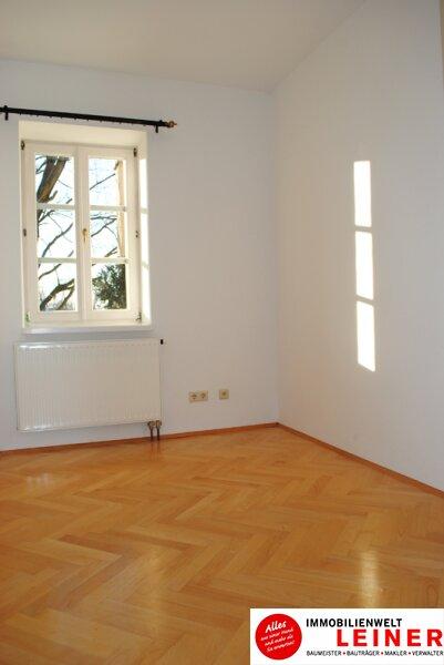 6 Zimmer Bürogebäude/Praxis in geschichtsträchtigem Gebäude nahe Wien Objekt_10771 Bild_202