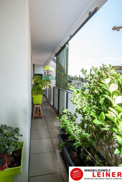 Traumhafte lichtdurchflutete Wohnung mit Balkon im Herzen von Schwechat Objekt_8930 Bild_230