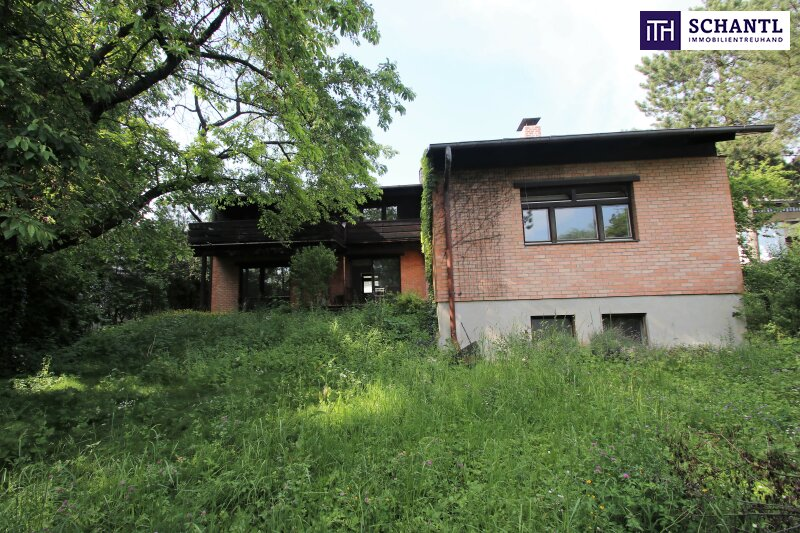 Naturidylle ! Absolute Toplage ! Südseitiges Traumgrundstück mit ausbaubarem Haus in Hinterbrühl ! /  / 2371Hinterbrühl / Bild 9